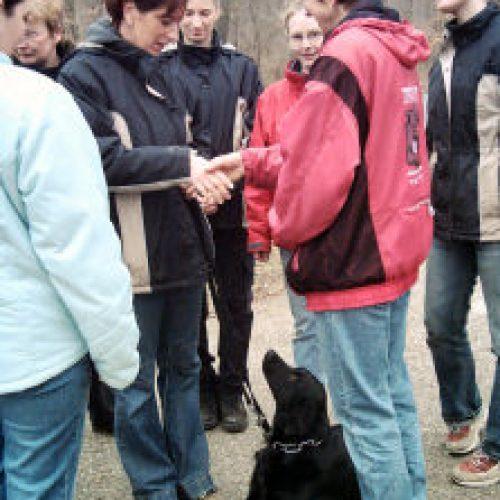 """""""Shake hands"""" waehrend der Hund ruhig liegen bleiben soll"""